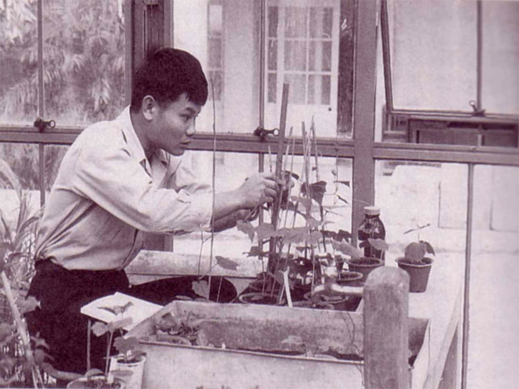 Dr.Higa in his early days